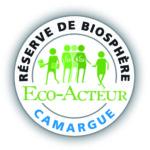 éco acteur – éco acteurs Camargue – atelier papetier – papier écologique – papier naturel